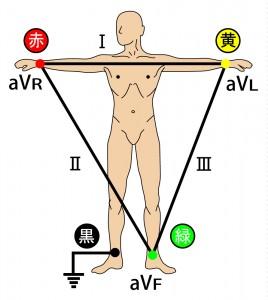 標準12誘導心電図 - 標準(双極)肢誘導と単極肢誘導