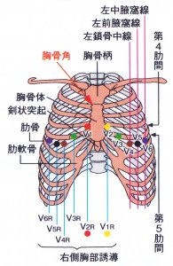 標準12誘導心電図 - 単極胸部誘導