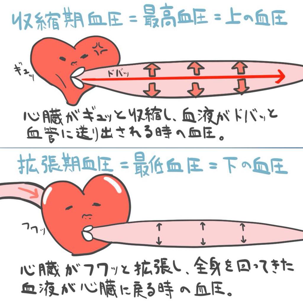 期 血圧 収縮